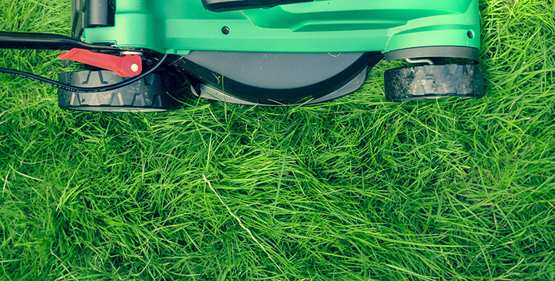 Wydajne akumulatory do kosiarki lub traktorka ogrodowego